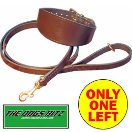 Leather Collar and Lead Set