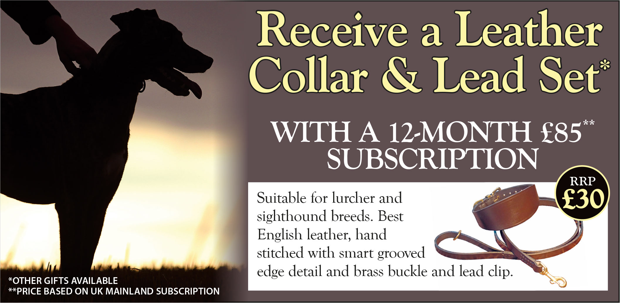 cmw fp carousel collar and lead set